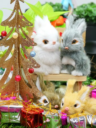 Christmas decorations background with rabbit doll photo