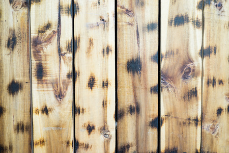 wood surface: Wood panel surface background