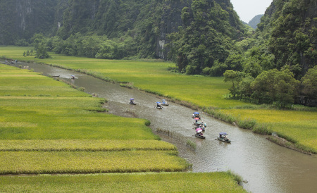 dong: Ninh Binh, Vietnam - May 27, 2015: Vietnamese women with conical hat paddling a boat on Ngo Dong river in Tam Coc Bich Dong heritage in Ninh Binh, Vietnam. Editorial