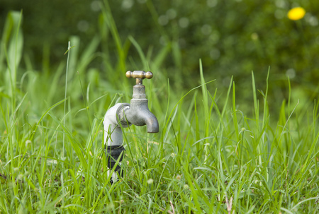 Faucet on green grass garden. No water.