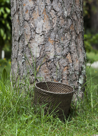 Bamboo basket, garbage bin on green grass Stock Photo
