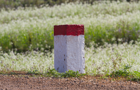 national geographic: Red and white painted milestones in range on a country road under the sunlight. Concept of purpose and target, long term and the way to achieve success.