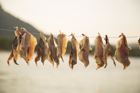 Dried fish hanging on a sunny day Фото со стока - 79462987