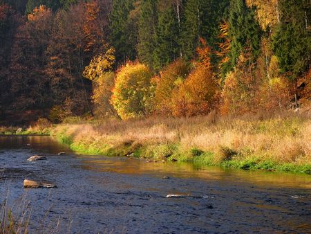 autumn Landscape, colourful trees, forest, river Stock Photo