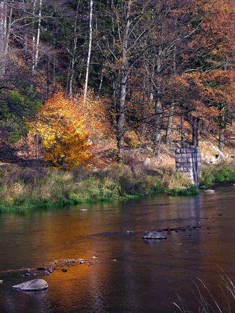 autumn Landscape, colourful trees, forest; river