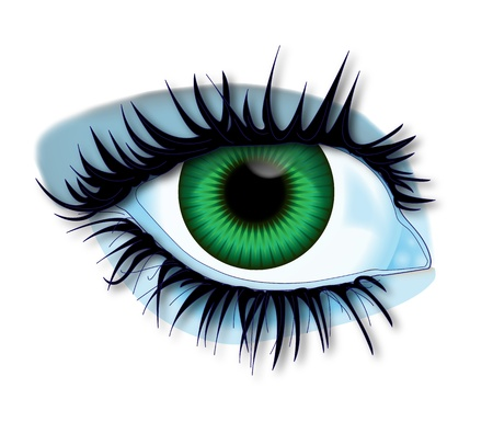 open eye: Illustration green eye of body parts