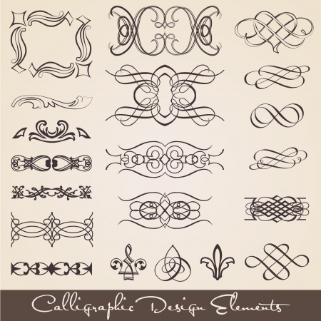 Calligraphic Design Elements Stock Vector - 14559506