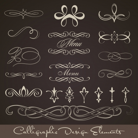 Calligraphic design elements - dark background Stock Vector - 14559507