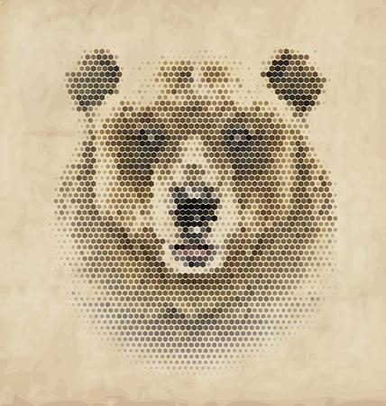 cave painting: Geometric Vintage diseño del oso