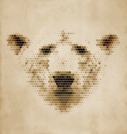 face painting: Vintage Geometric Polar Bear Design