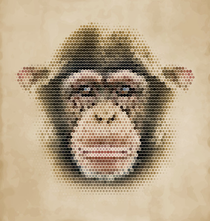 Monkey portrait made of geometrical shapes - Vintage Design Chimpanzee face Illustration