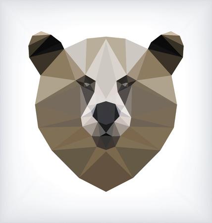 eyes cave: Geometrical Bear Portrait
