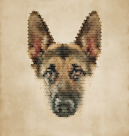 shepherd with sheep: Dog portrait made of geometrical shapes - Vintage Design Illustration