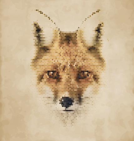 wścieklizna: Fox portret z kształty geometryczne - Vintage Design Ilustracja