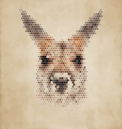 geometrical shapes: Kangaroo portrait made of geometrical shapes - Vintage Design Illustration