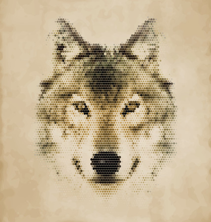 Wolf portrait made of geometrical shapes - Vintage Design Vector