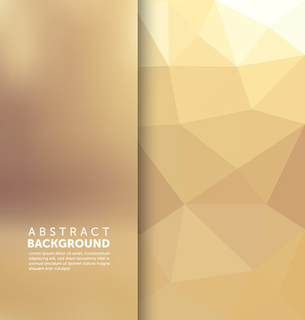 Abstract Background - Triangle and blurred banner design 向量圖像
