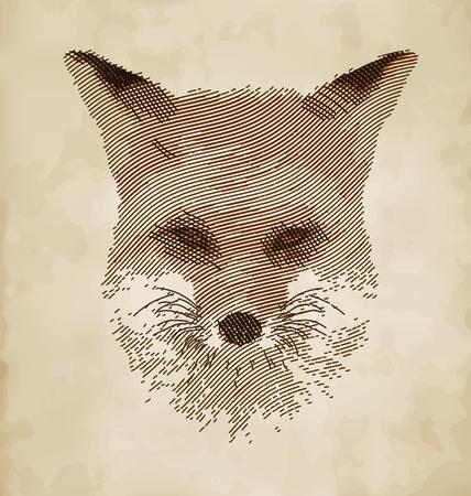 wścieklizna: Fox Portret - Szkic Styl Zwierząt Rysunek Vector Design Ilustracja