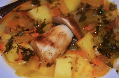 cep: Cep in soup