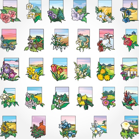 29 Flowers and landscape - a card, a background, a set.