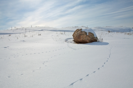 Stone in the snow