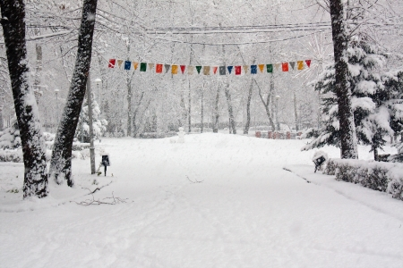 alley in the park during a blizzard