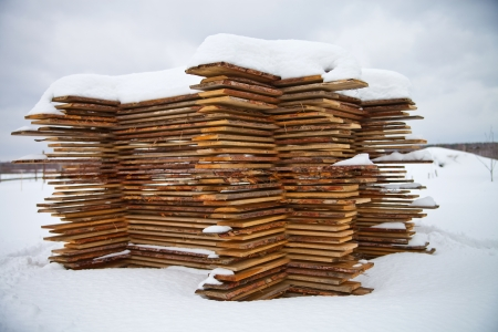 A pile of pine boards in the snow