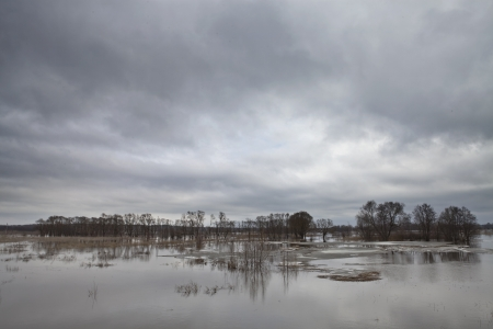 floodplain: Floodplain of the river during the floods