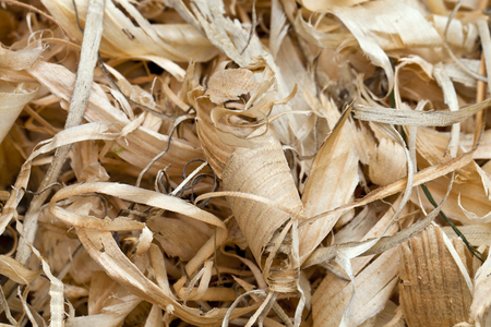 houtkrullen: Many yellow wood shavings of various sizes and shapes Stockfoto
