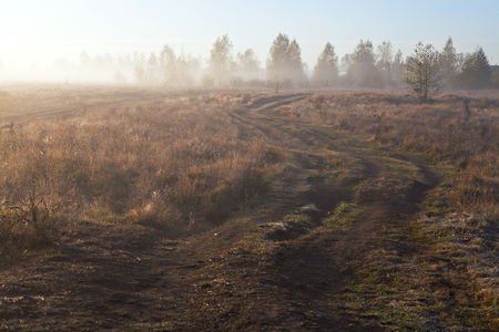 Dirt road in the village, lit by the morning sun in the fog