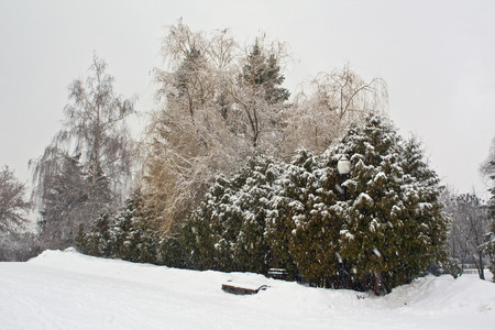 Bench, lantern and trees covered with snow in the park
