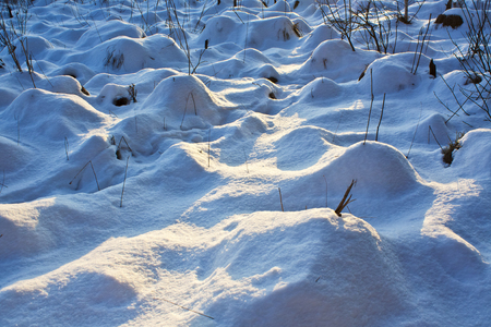 Hummocks on the swamp in the snow at sunset