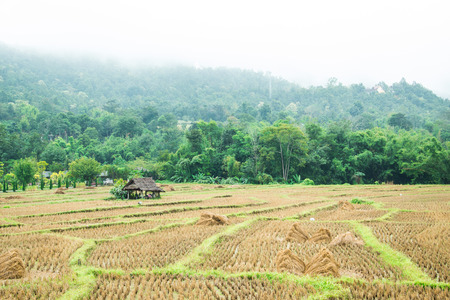 culvert: cottage and a foggy, winter at Pai in the Thailand countryside. Stock Photo