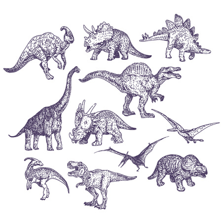 dinosaurio caricatura: Dinosaurios dibujos hechos a mano set ilustraciones