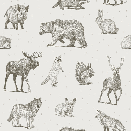 wolves: Seamless pattern with different hand drawn animals Illustration