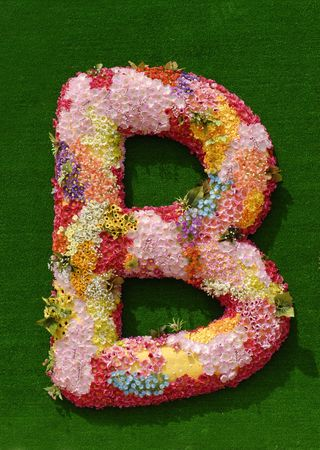 flowers alphabets  photo