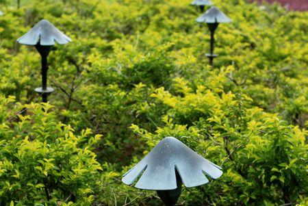 lamp post: forma di fungo lampada posta nei giardini Archivio Fotografico
