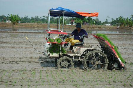 plantgoed machine en rijstvelden gebied op het platteland