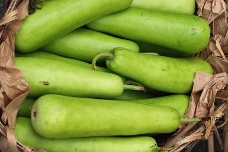 bottle gourd selling at the market photo
