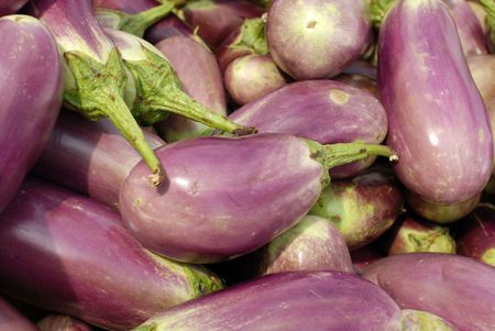 egg plant: egg plant selling at the markets