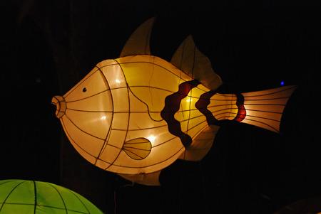 fish lantern in the Chinese gardens photo