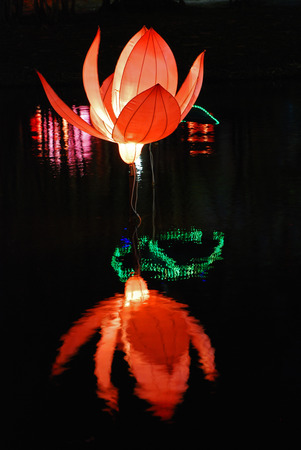 lotus lantern in the Chinese gardens photo