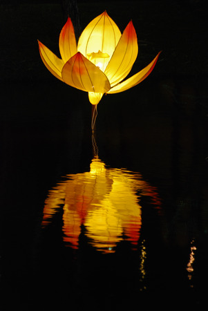 lotus lantern in the Chinese gardens