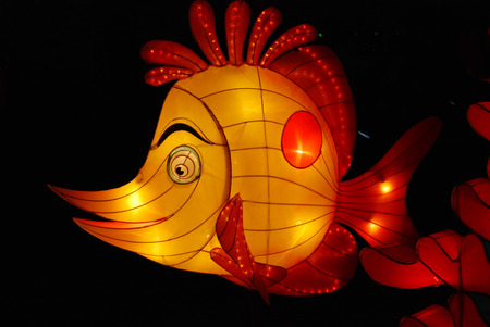 fish lantern in the Chinese gardens