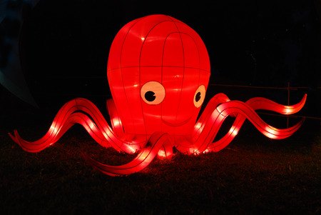 octopus lantern in the Chinese gardens photo