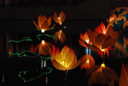 Lotus lantaarn in de Chinese tuinen  Stockfoto