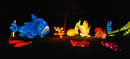 fish lantern in the Chinese gardens photo