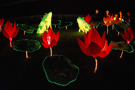 frog lantern in the Chinese gardens photo