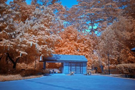 wooden hut: Infrared photo � tree and wooden hut in the parks Stock Photo
