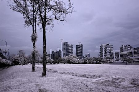 ir: Infrared photo – tree, building and skies in the parks